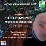 """""""El cardamomo"""" de Rodolfo Rodríguez"""