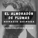 """""""El almohadón de plumas"""" de Horacio Quiroga"""