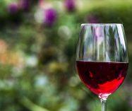 """""""El alma del vino"""" de Charles Baudelaire"""
