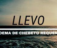"""Llevo"" de Chebeto Requena"