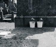 """""""Amor constante más allá de la muerte"""" de Francisco de Quevedo"""
