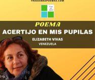 """""""Acertijo en mis pupilas"""" de Elizabeth Vivas"""