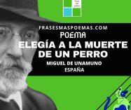 """""""Elegía a la muerte de un perro"""" de Miguel de Unamuno (Poema)"""