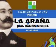 """La araña"" de Juan Ramón Molina (Poema)"