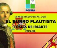 """""""El burro flautista"""" de Tomás de Iriarte (Poema/fábula)"""