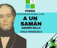 """""""A un samán"""" de Andrés Bello (Poema)"""