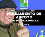 """""""Pensamiento de arroyo"""" de Ángel Marino Ramírez V. (Poema)"""