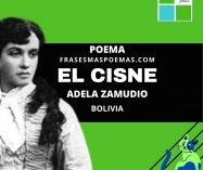 """""""El cisne"""" de Adela Zamudio (Poema)"""